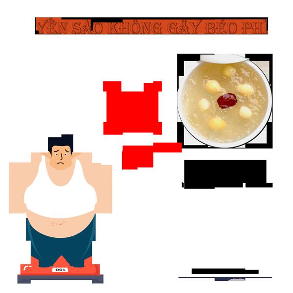 ăn yến sào không gây béo phì