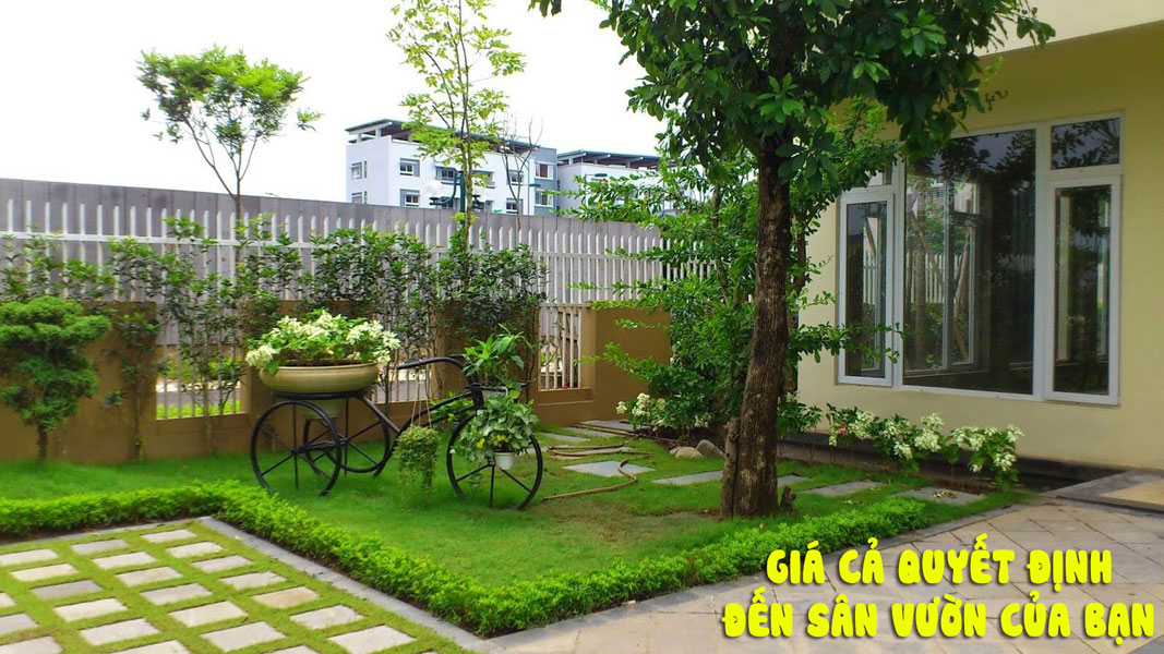 Báo giá thi công sân vườn