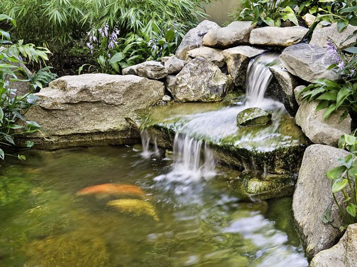 thi công tiểu cảnh thác nước, hồ nước